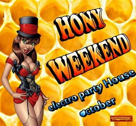 VA-Electro Party Honey Weekend (2011)